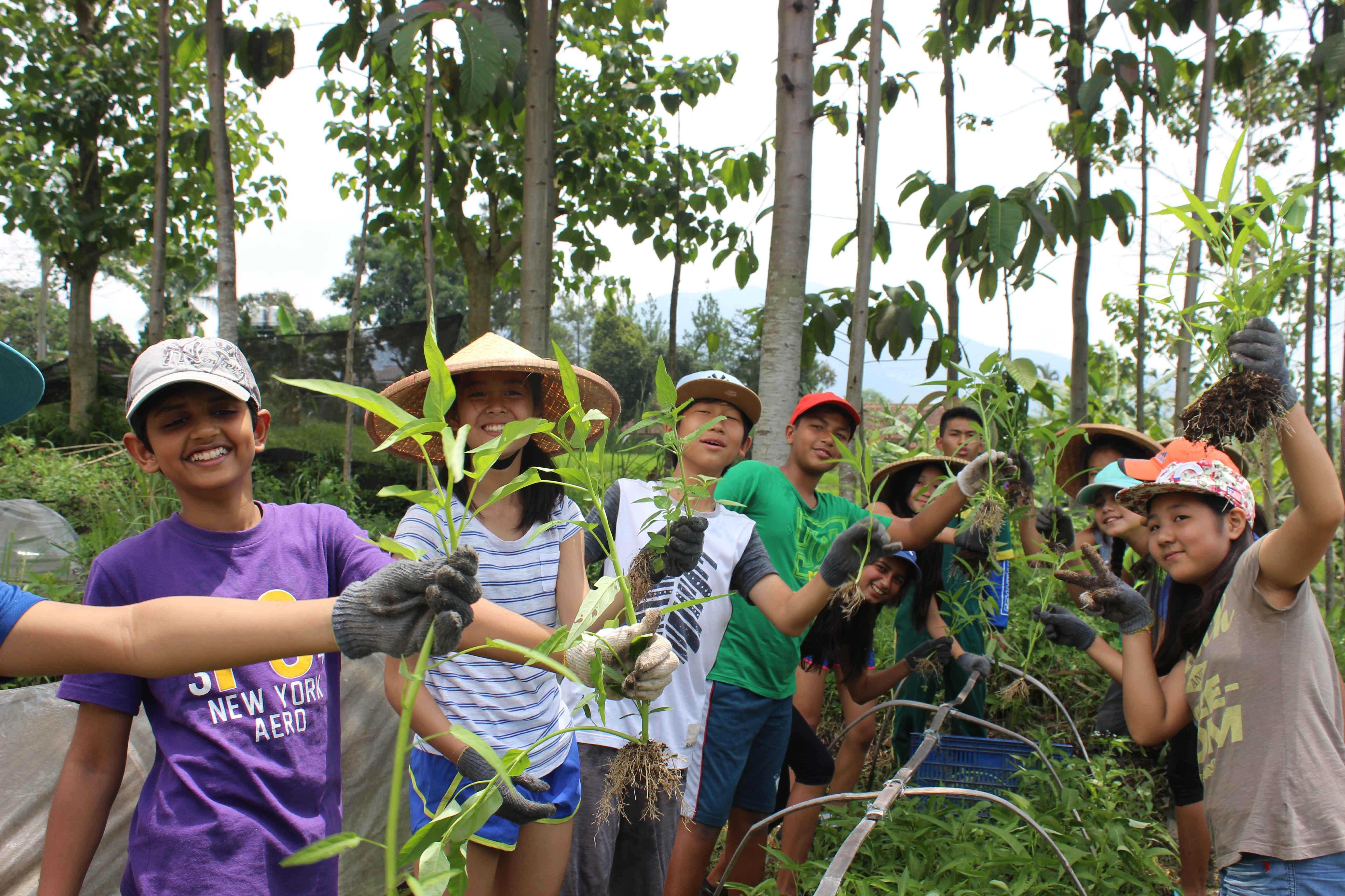 YUM Organic Farming Workshop